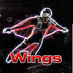 翼装高空跳伞VR下载